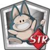Support Item: Puar (STR)
