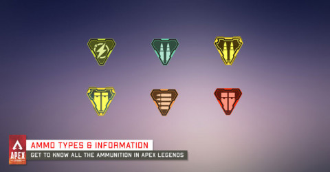 Ammo Types & Information