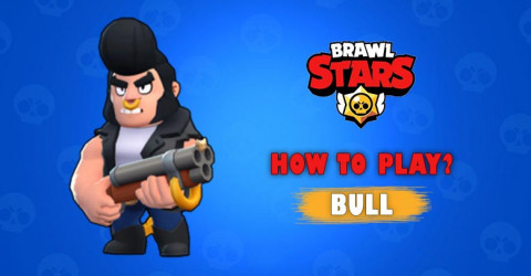 How to Play Bull