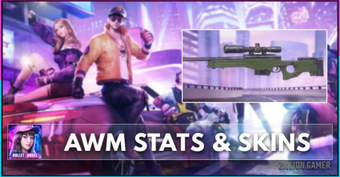 AWM Stats, Skins, & How to Get
