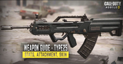 Type 25 Stats, Attachment, & Skin