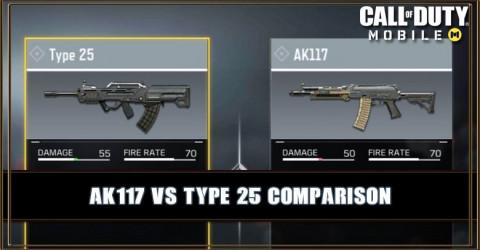 AK117 VS Type 25 Comparison