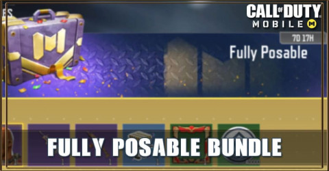 Fully Posable Bundle