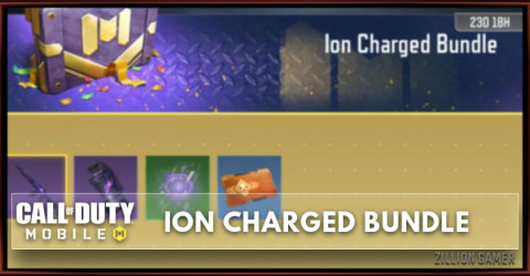 Ion Charged Bundle