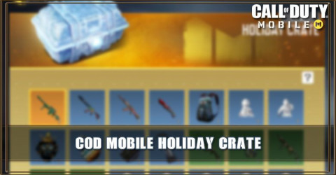 Holiday Crate Items & Odds