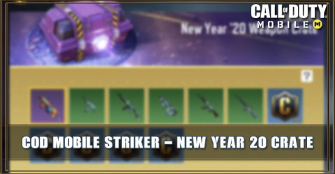 New Year '20 Weapon Crate Items & Odds