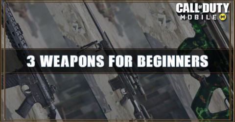 3 Weapons Beginners Should Use