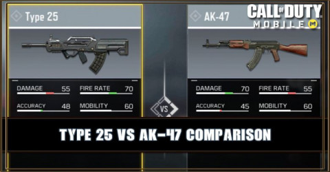 Type 25 VS AK-47 Comparison