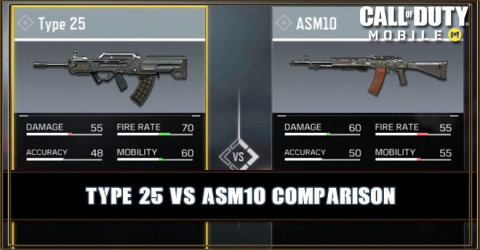 Type 25 VS ASM10 Comparison