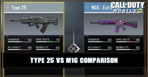 Type 25 VS M16 Comparison