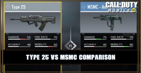Type 25 VS MSMC Comparison