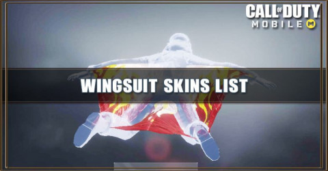 Wingsuit Skins List