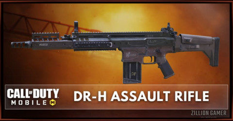 DR-H Stats, Attachment, & Skin