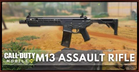 M13 Stats, Attachment, & Skin