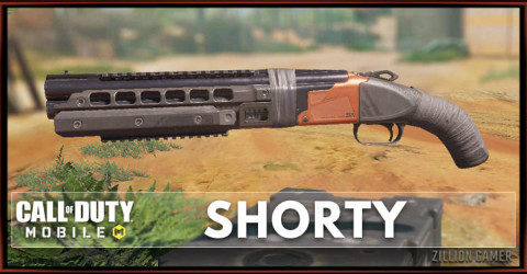 Shorty Stats, Attachment, & Skin