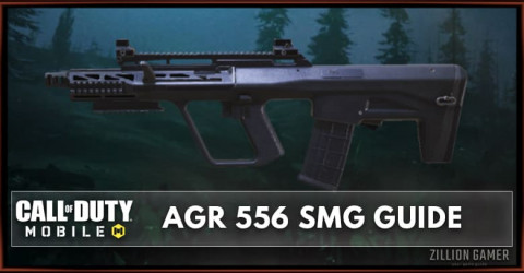 AGR 556 Stats, Attachment, & Skin