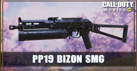 PP19 Bizon Attachment, Stats, & Skin