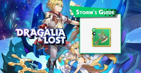 Storm's Guide
