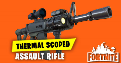 Thermal Scope Assault Rifle