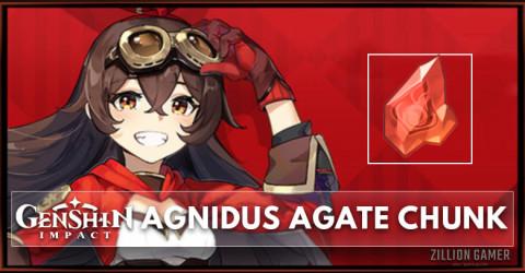 Agnidus Agate Chunk