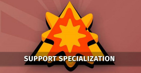 Support Specialization