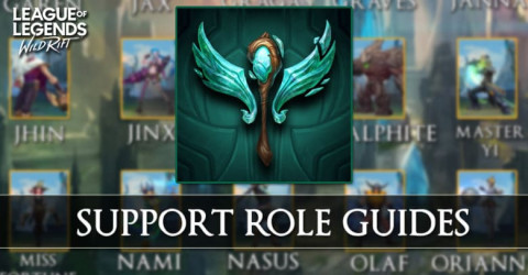 Support Role Guides In Wild Rift