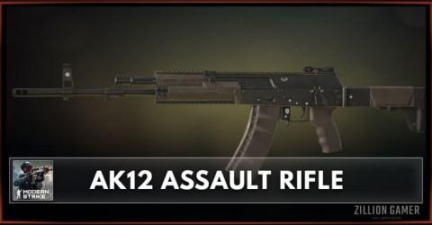 AK12 Assault Rifle Stats, Attachments & Skins