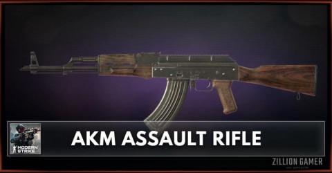 AKM Assault Rifle Stats, Attachments & Skins