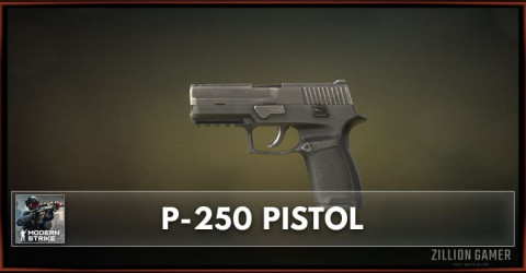 P-250 Pistol Stats, Attachments & Skins
