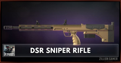 DSR Sniper Rifle Stats, Attachments & Skins