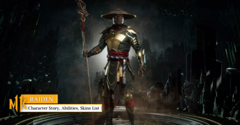 Raiden Character Story, Abilities, & Skins List