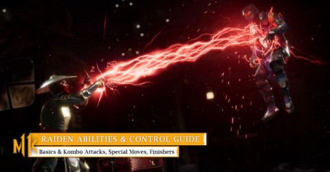 Raiden Character Abilities & Control Guide