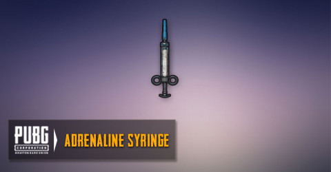Adrenaline Syringes