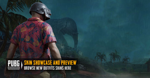 Skin Showcase in PUBG MOBILE