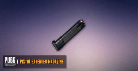 Extended Mag (Pistols)
