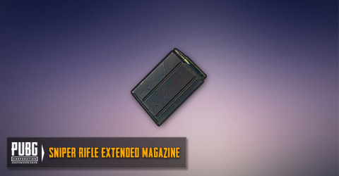 Extended Mag (SR,DMR)