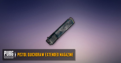 Quickdraw Extended Mag (Pistols)