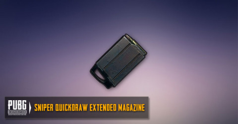 Quickdraw Extended Mag (SR,DMR)
