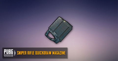 Quickdraw Mag (SR,DMR)