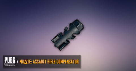 Assault Rifles Compensator