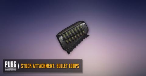 Bullet Loops (SR)