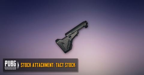 Tact Stock (AR,SMG)