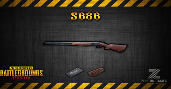 Pubg S686 Skin