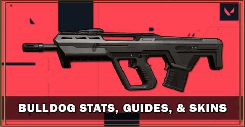Bulldog Stats, Guides, & Skins
