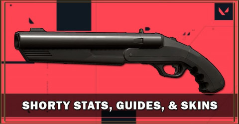 Shorty Stats, Guides, & Skins