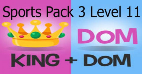 S pack 3 level 11