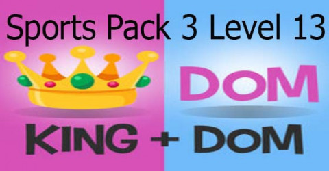 S pack 3 level 13